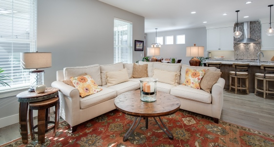 Professional Residential Painting Services for Home Interiors